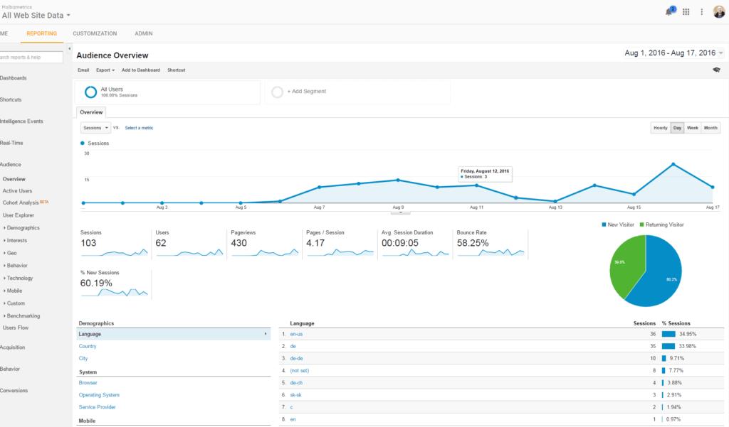 Google Analytics Holbizmetrics_August