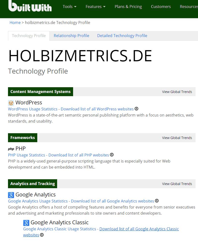 Holbizmetrics builtwith report